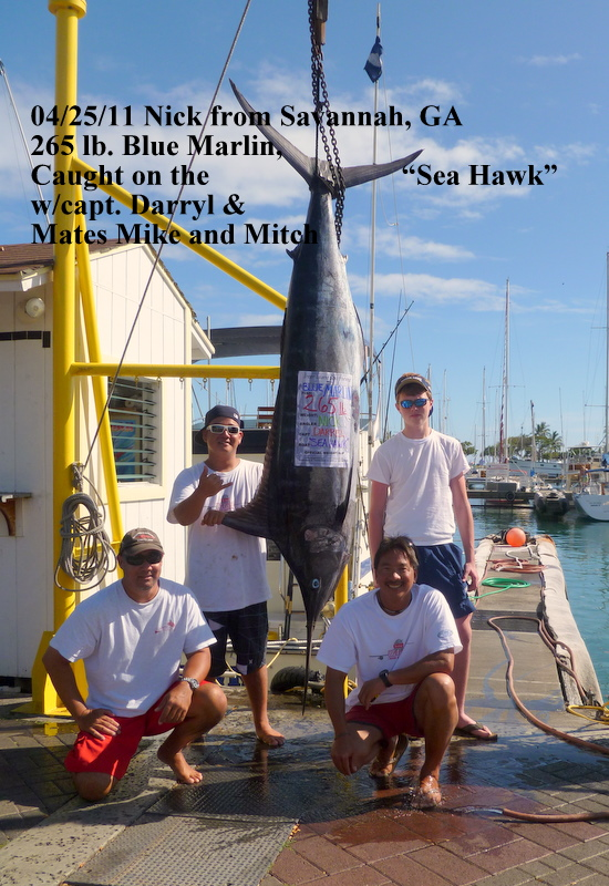 sea hawk fishing report maggie joe sport fishing oahu