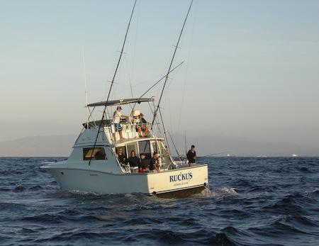Short billed spearfish maggie joe sport fishing oahu for Deep sea fishing oahu