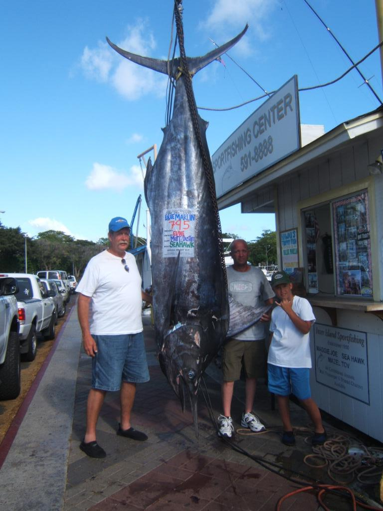 Eddie caught this 795 lb marlin with us on the Sea Hawk