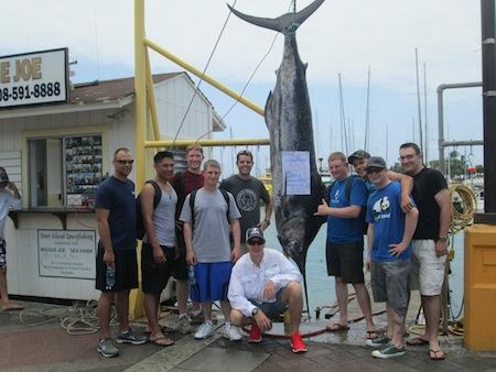 380 lb Blue Marlin caught by Alex Jones
