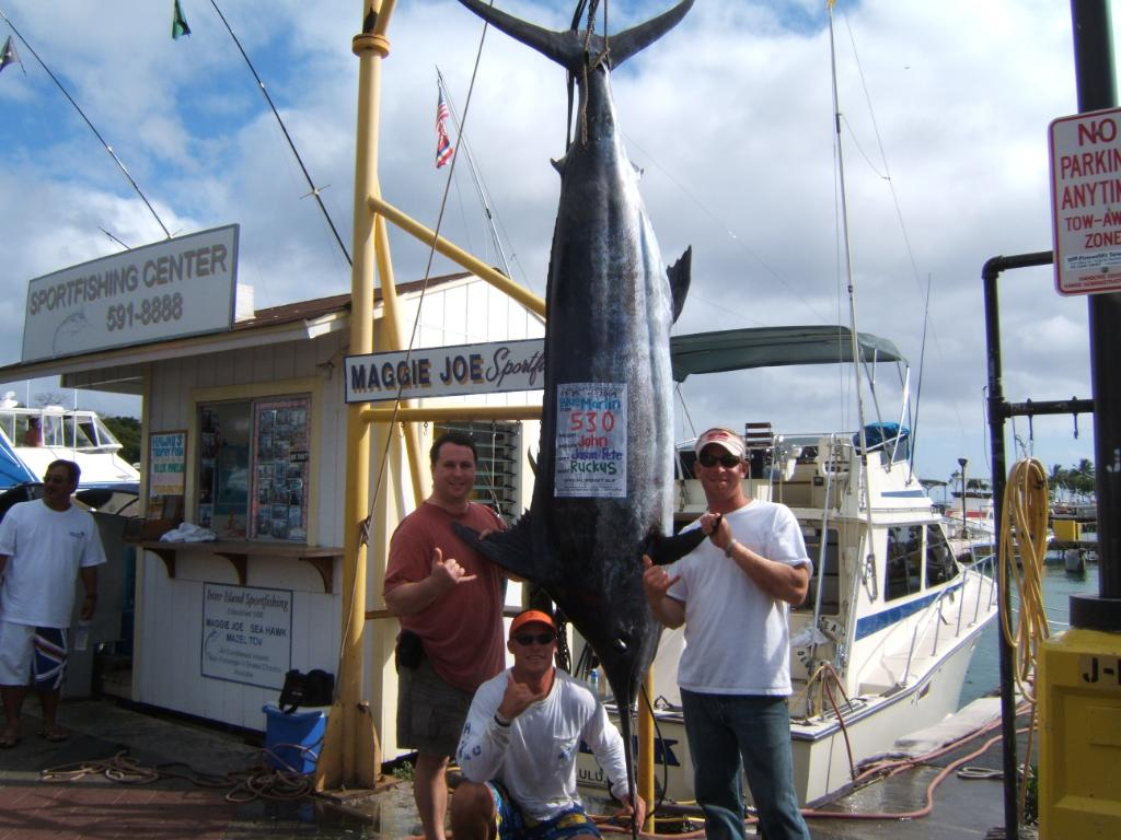 530 lb Pacific Blue Marlin