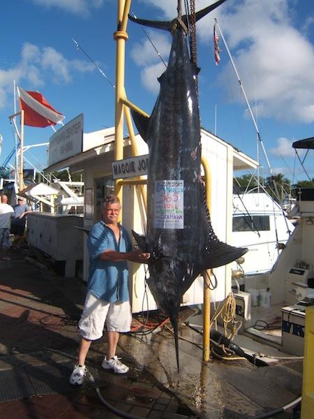 sea-hawk-565-blue-marlin-angler-bill