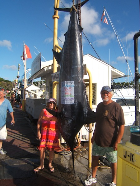 sea-hawk-565-blue-marlin-jim-and-deb