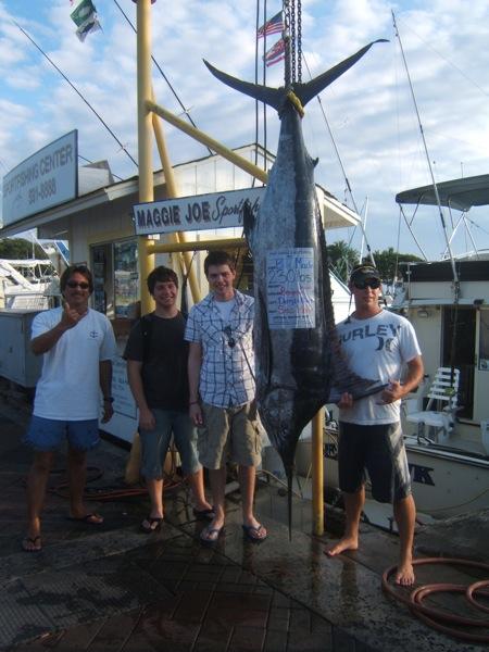 sea-hawk_230lbs-blue-marlin_don-jenkins-party-masaki-hagiwara-ardeiper-party