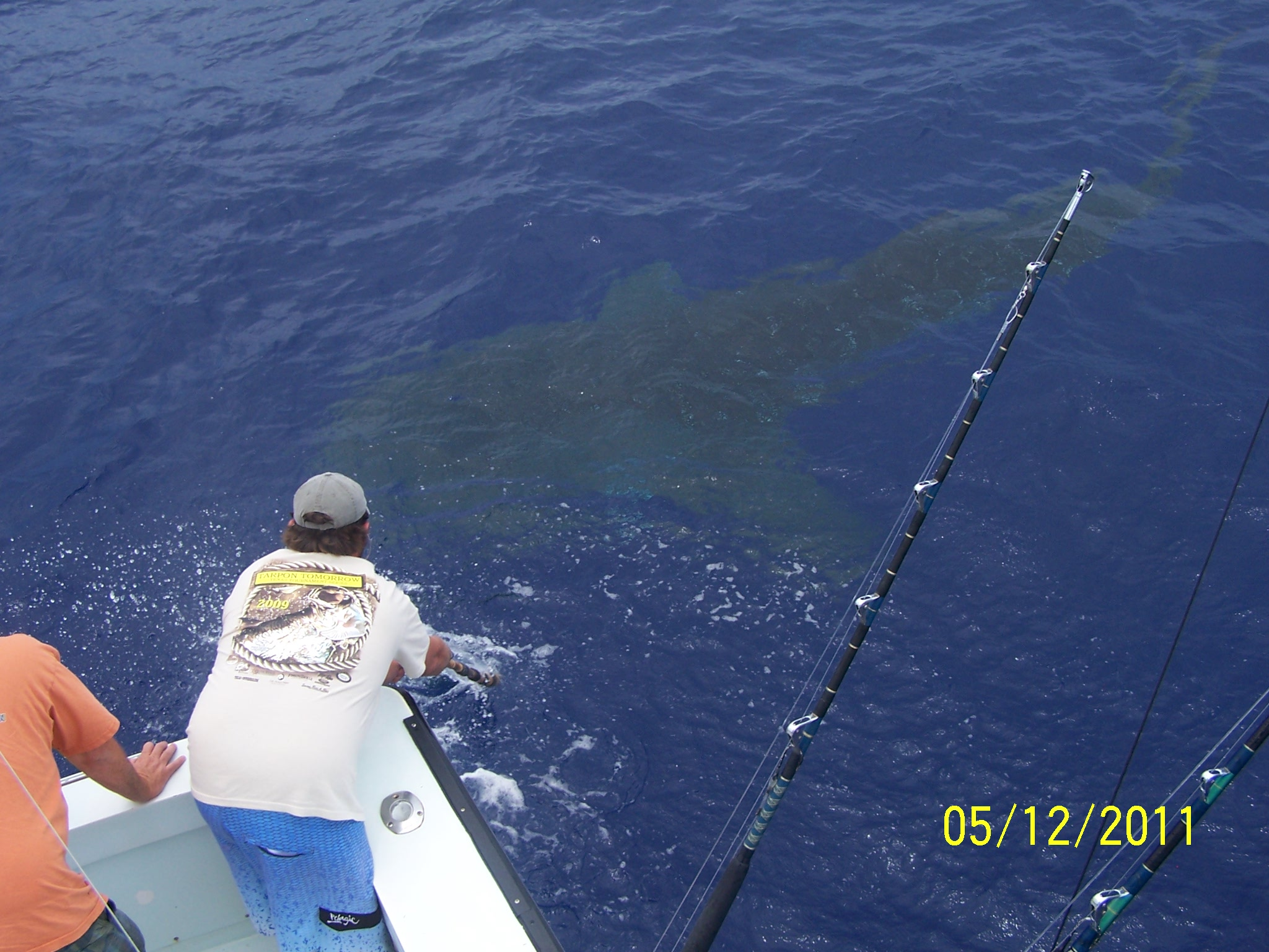 oahu sport fishing photos sent in maggie joe sport
