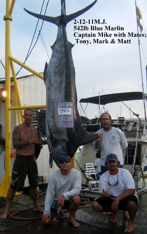 2011-02-12-542lb-blue-on-the-mj-with-capt-mike-mates-tony-mark-matt