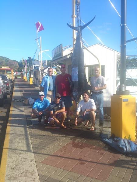 Angler Clark with 385 lb Blue Marlin