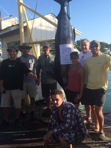295 lb Bleu Marlin
