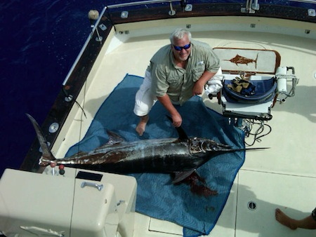 oahu deep sea fishing charter - sport fishing tournament hawaii