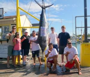 Honolulu Deep Sea Fishing Marlin