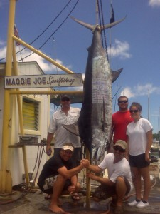 Chett Barret and 425 lb Marlin