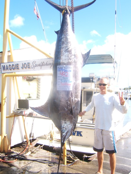 sea-hawk-482lb-blue-marlin-angler-jeff