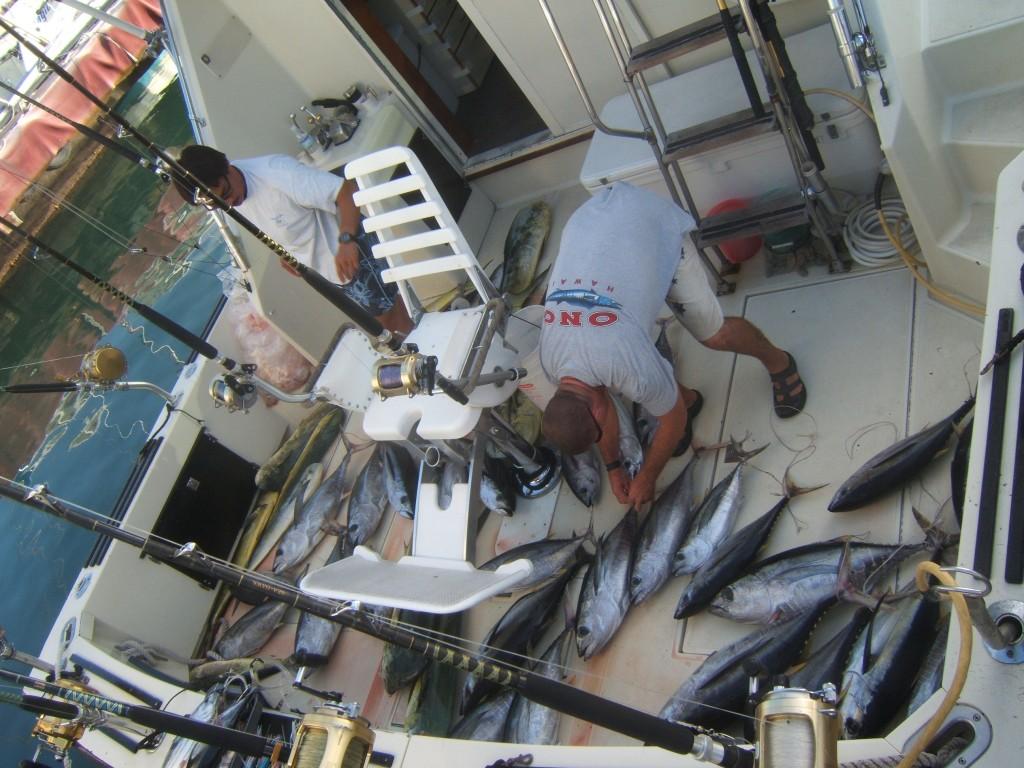 sea-hawk_aku-mahi_43-fish-total