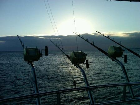 kona sportfishing charter
